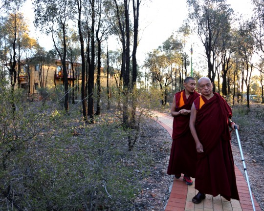 Lama Zopa Rinpoche with Ven. Sangpo on brick path from Thubten Shedrup Ling Monastery to Great Stupa of Universal Compassion, Australia, September 2014. Photo by Ven. Thubten Kunsang.