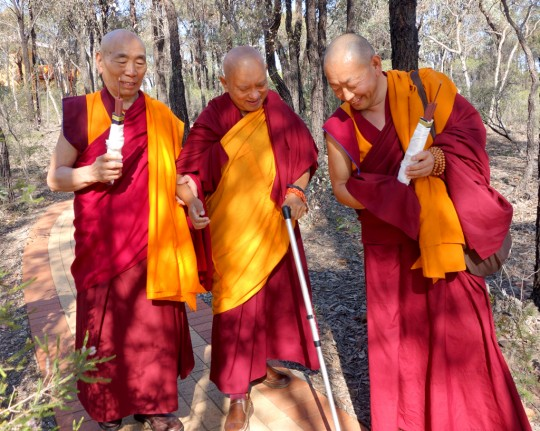 Lama Zopa Rinpoche being led to the long life puja by Geshe Doga and Geshe Wangchen, Bendigo, Australia, October 2014. Photo by Ven. Roger Kunsang.