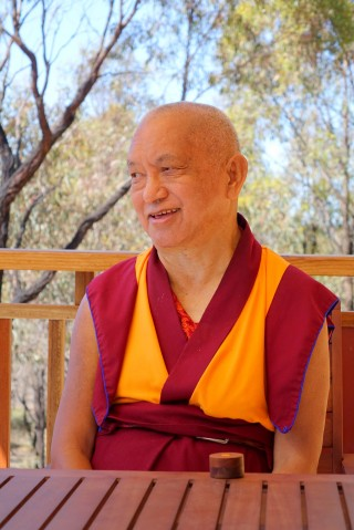 Lama Zopa Rinpoche sitting outside Thubten Shedrup Ling Monastery, Bendigo, Australia, October 2014. Photo by Ven. Roger Kunsang