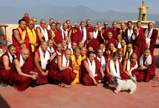 Lama Zopa Rinpoche with some of the senior Kopan monks, Kopan Monastery, December 2, 2014. Photo by Ven. Roger Kunsang.