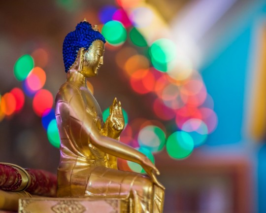 One of hundreds of buddha statues in Lama Zopa Rinopche's altar room at Buddha Amitabha Pure Land, Washington, US, July 2015. Photo by Chris Majors.