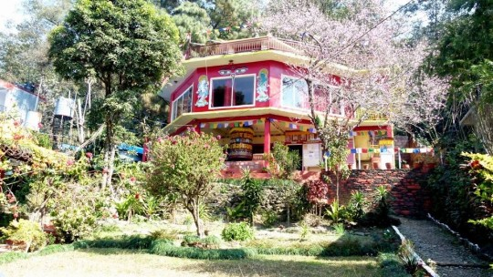 The Pokhara Buddhist Meditation Centre, Nepal, was not damaged by the 7.8 magnitude earthquake but due to damage in surrounding areas, the center has experienced a drastic loss of visitors.