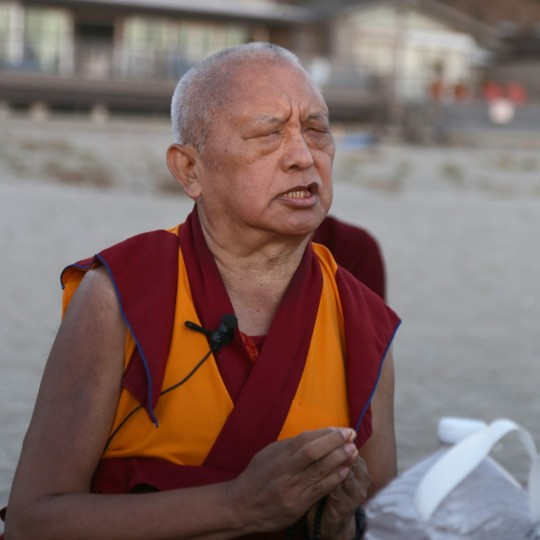 Lama Zopa Rinpoche on the beach in California, November 2015. Photo by Ven. Thubten Kunsang.