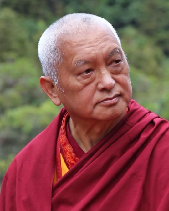 Lama Zopa Rinpoche, New Zealand, May 2015. Photo by Ven. Thubten Kunsang.