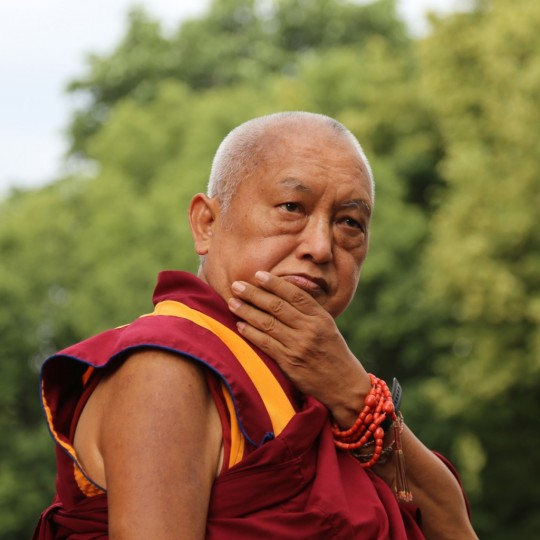 Lama Zopa Rinpoche, Moscow, Russia, July 2015. Photo by Ven. Thubten Kunsang.