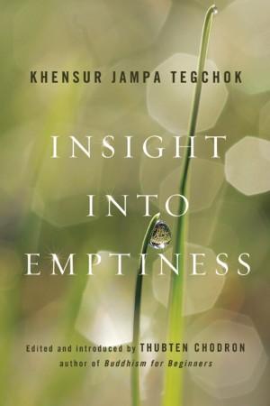 insight-into-emptiness-1-e1338576697856
