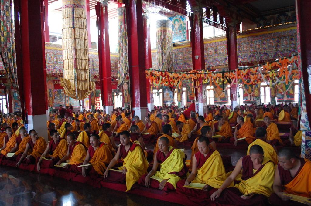Monks at Sera Mey Monastery Offering Medicine Buddha Puja