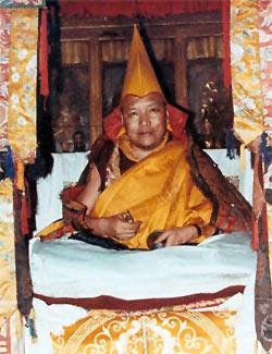 Venerable Trulshik Rinpoche