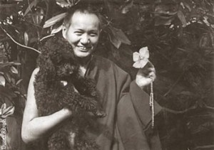 LYWA received a grant award to help publish the Big Love: Lama Yeshe's official biography. The book is scheduled to release later in 2013.