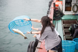 After the animal liberation, the dear animals were released back to their homes.