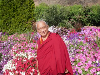 Lama Zopa Rinpoche, Washington, US, July 2014.  Photo by Ven Holly Ansett