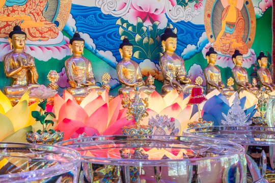 Holy objects and extensive offerings at Kachoe Dechen Ling. Photo by Chris Majors.