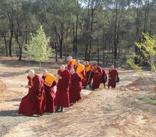 Sangha in procession leading Lama Zopa Rinpoche to the Great Stupa of Universal Compassion, September 2014. Photo by Drolkar McCallum.