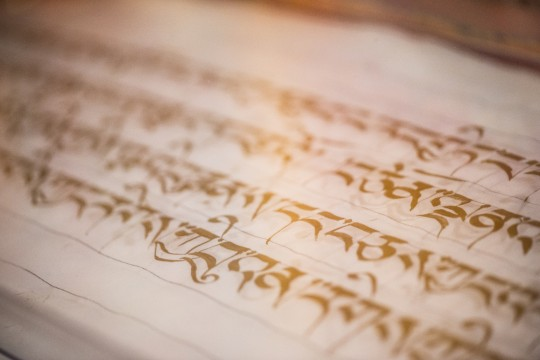For thirteen years, Ven. Tsering has been writing out the Prajnaparamita in pure gold at the request of Lama Zopa Rinpoche. Photo by Chris Majors.