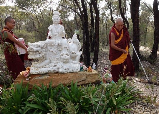 Lama Zopa Rinpoche on the path between the Great Stupa of Universal Compassion and Thubten Shedrup Ling Monastery, Australia, October 2014. Photo by Ven. Roger Kunsang.