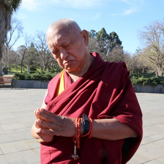 Lama Zopa Rinpoche in Bendigo, Victoria, Australia, September 2014. Photo by Ven. Thubten Kunsang.
