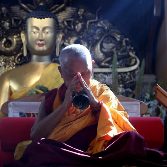 Lama Zopa Rinpoche at Jamyang Buddhist Centre, London, UK, July 2014. Photo by Ven. Thubten Kunsang.