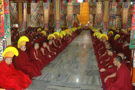 The monks of Sera Je Monastery offering extensive Medicine Buddha puja.
