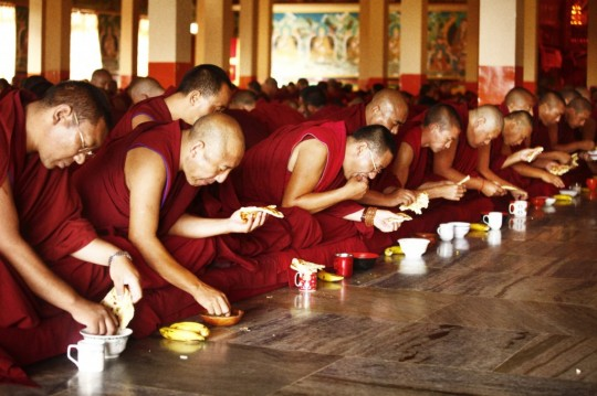 8,300 meals are offered every day to all of the monks studying at Sera Je Monastery.