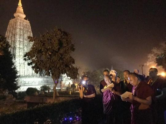 Mahabodhi Stupa, Bodhgaya, India, February 2015. Photo by Ven. Sarah Thresher.