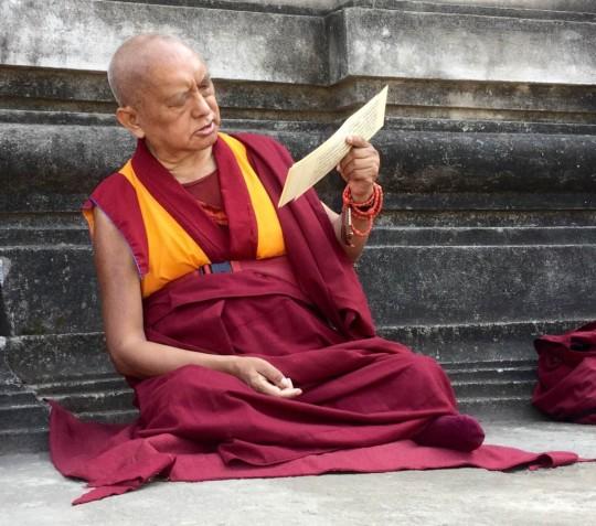 "Lama Zopa Rinpoche reading Lama Tsongkhapa's ""Lekshe Nyingpo,"" Bodhgaya, India, March 2015. Photo by Ven. Sarah Thresher."