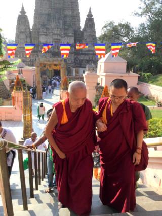 Lama Zopa Rinpoche leaving the Mahabodhi Stupa complex, Bodhgaya, India, March 2015. Photo by Ven. Sarah Thresher.
