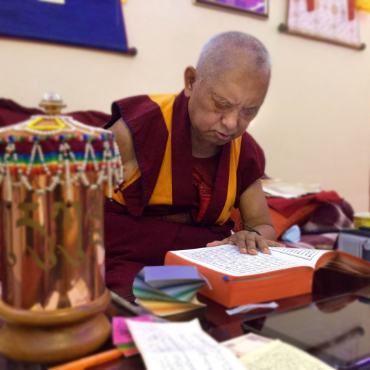 Lama Zopa Rinpoche reciting the Sutra of Golden Light for long-time student Anila Ann McNeil, who passed away February 2015, Bodhgaya, India. Photo by Ven. Sarah Thresher.