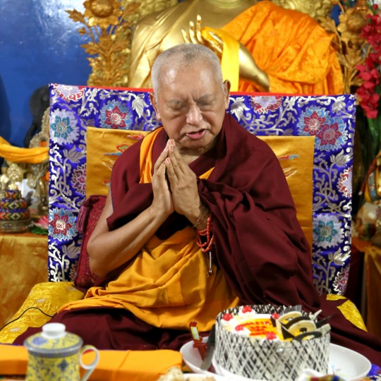Lama Zopa Rinpoche at Root Institute, Bodhgaya, India, January 2015. Photo by Ven. Thubten Kunsang.