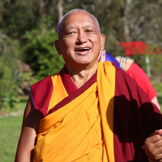 Lama Zopa Rinpoche on the way to bless the stupa a Mahamudra Centre, Colville, New Zealand, May 2015. Photo by Ven. Thubten Kunsang.