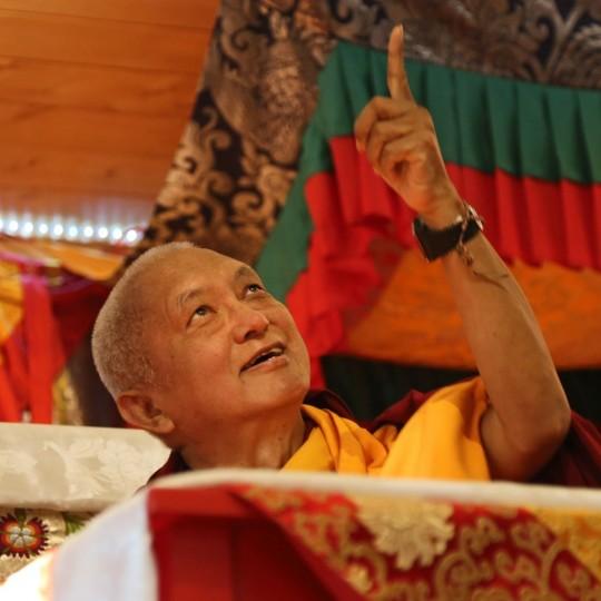 Lama Zopa Rinpoche, Chandrakirti Centre, Nelson, New Zealand, May 2015. Photo by Ven. Thubten Kunsang.