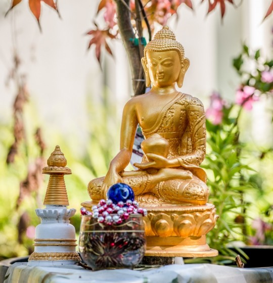 Shakyamuni Buddha with offerings, Kachoe Dechen Ling, California, USA. Photo by Chris Majors.