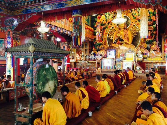 Kopan Sangha performing the pujas that high lamas recommended for Lama Zopa Rinpoche's long life. Photo courtesy of Kopan Monastery Facebook.