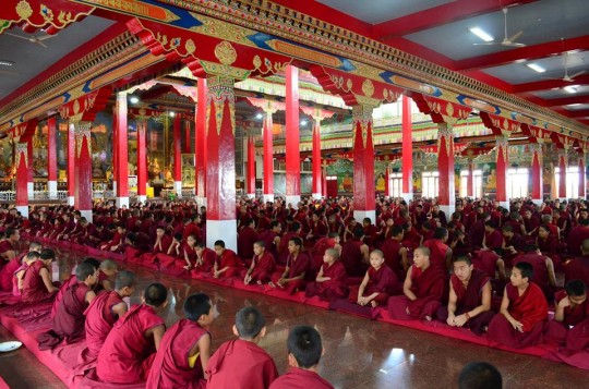 Approximately 2,000 monks study at Sera Mey Monastery and will benefit from the new debate courtyard being built.