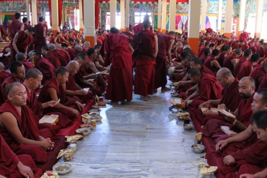 Through the Sera Je Food Fund, 8,300 meals are offered every day to the monks of Sera Je Monastery.