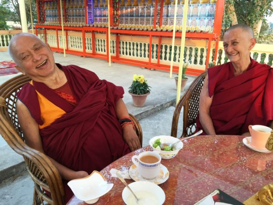 Lama Zopa Rinpoche having tea with Ven. Thubten Labdron (Trisha Donelly) at Root Institute, India, February 2015. Photo by Ven. Roger Kunsang.