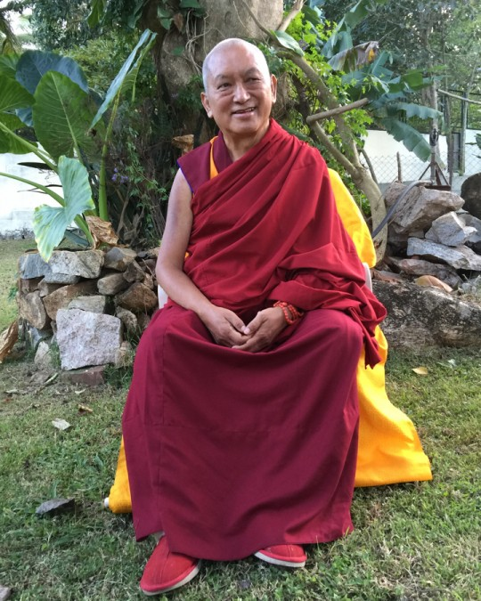 Lama Zopa Rinpoche in the garden at Osel Labrang, Sera Monastery, India, December 2015. Photo by Ven. Roger Kunsang.