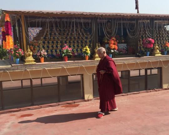 Lama Zopa Rinpoche doing korwa around 1000 buddhas at Kopan Monastery, Nepal, December 2015. Photo by Ven. Roger Kunsang.
