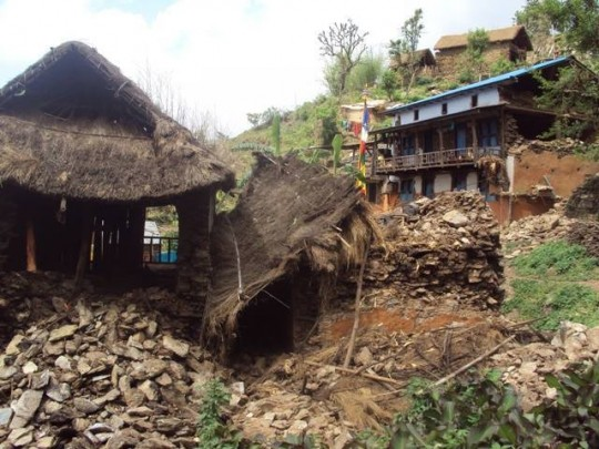 Yeshe Norbu provided rebuilding support to villages in Nepal focusing on the elderly and alone as well as families who were without resources prior to the earthquake, making post-earthquake survival incredibly difficult.
