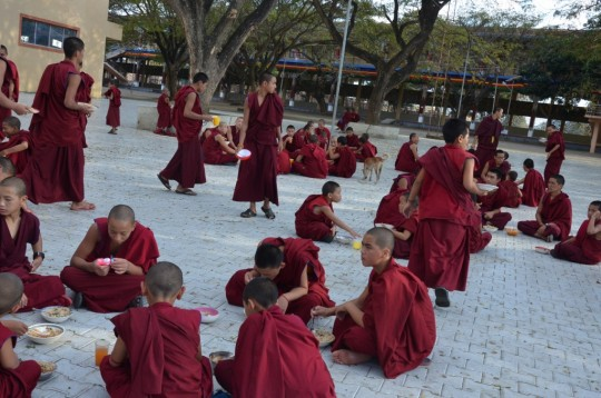 Three meals are offered every day to any monk of Sera Je Monastery who would like it.