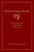 How-to-Enjoy-Death-320x485