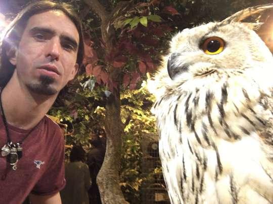 Ösel saying hello to an owl.