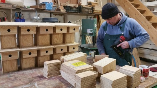 Ven. Tenzin Yonten constructs 19 Dharma nesting boxes, January 2016. Photo courtesy of Ven. Tenzin Yonten.