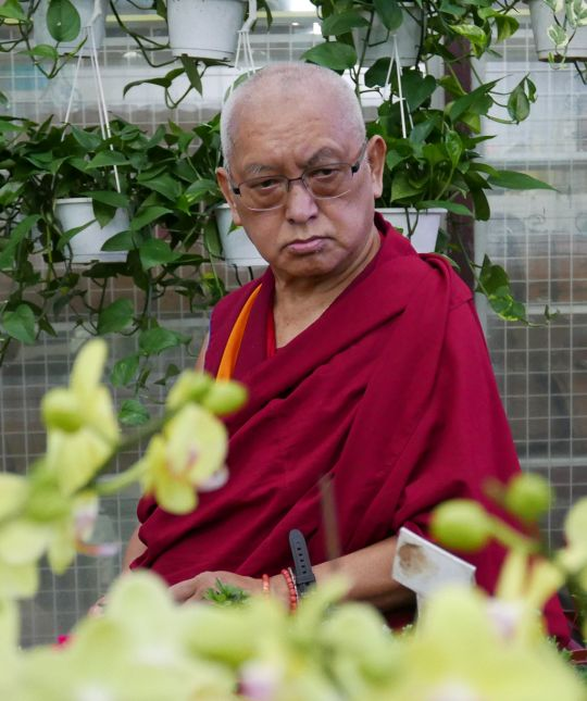Lama Zopa Rinpoche shopping for flowers, Taiwan, May 2016. Photo by Ven. Roger Kunsang.