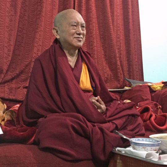 Lama Zopa Rinpoche, Tso Pema, India, January 2016. Photo by Ven. Roger Kunsang.