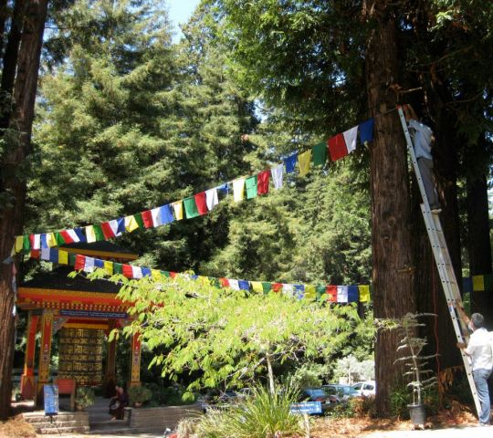 Hanging prayer flags at Land of Medicine Buddha, August 21, 2013. Photo courtesy of LMB's Facebook page.