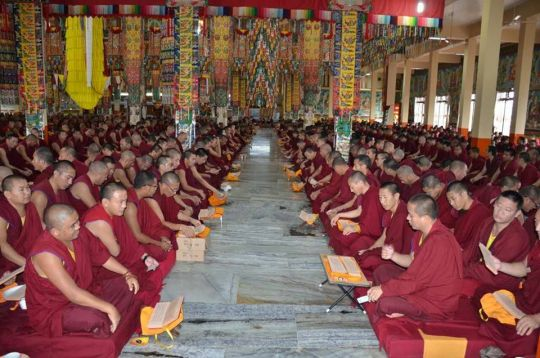 Monks of Sera Je Monastery performing puja together.