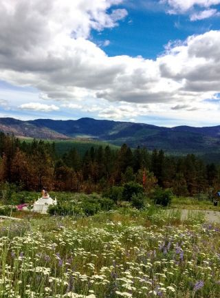 Buddha Amitabha Pure Land, Washington State, October, 2016.