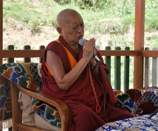 Lama Zopa Rinpoche chants blessings to rescued dogs in Bhutan, July 2016. Photo by Ven. Holly Ansett.