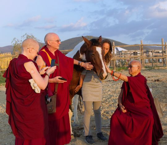 lama-zopa-rinpoche-horse-blessing-aquila-nera
