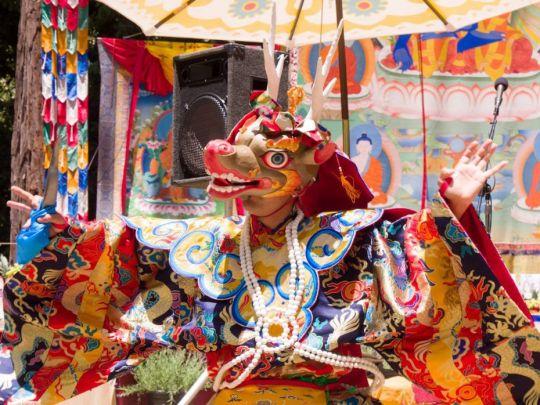 land-of-medicine-buddha-deer-dance-tenzin-monlam-july-2017